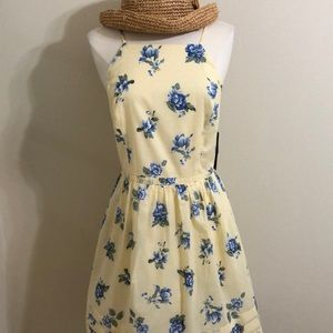 NWT Fit & flare summer dress